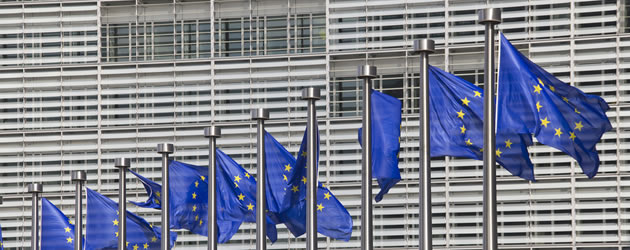 european-union-flags-2