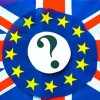 EU Referendum_Stay or go